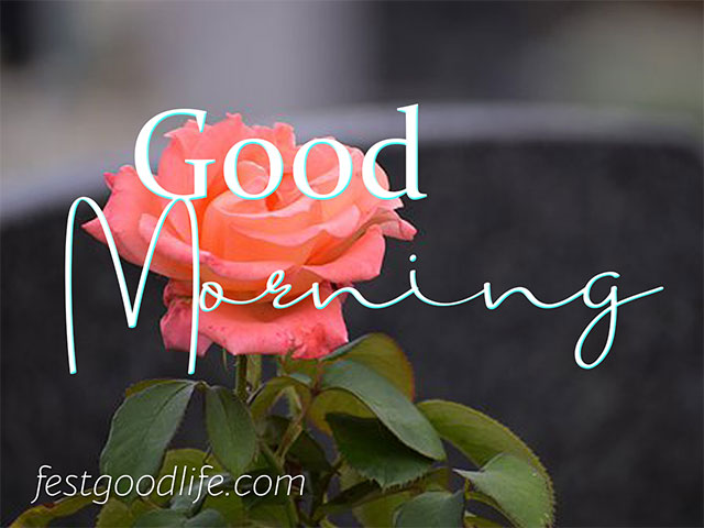 very old good morning image download for old man or women