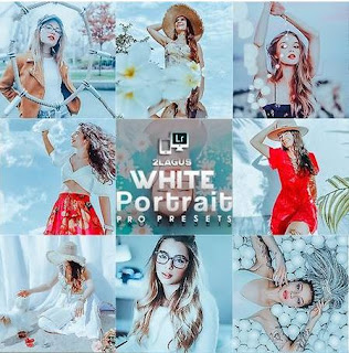 White Portrait Presets Lightroom(Desktop/Mobile)