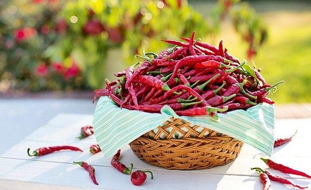 دراسة: تناول الطعام الحار يطيل عمر الإنسان
