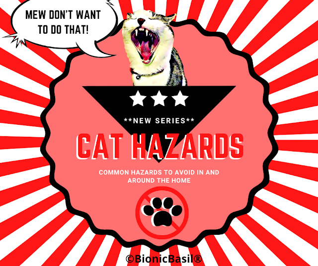 Cat Hazards Banner ©BionicBasil®