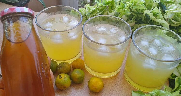 minuman khas bengkulu