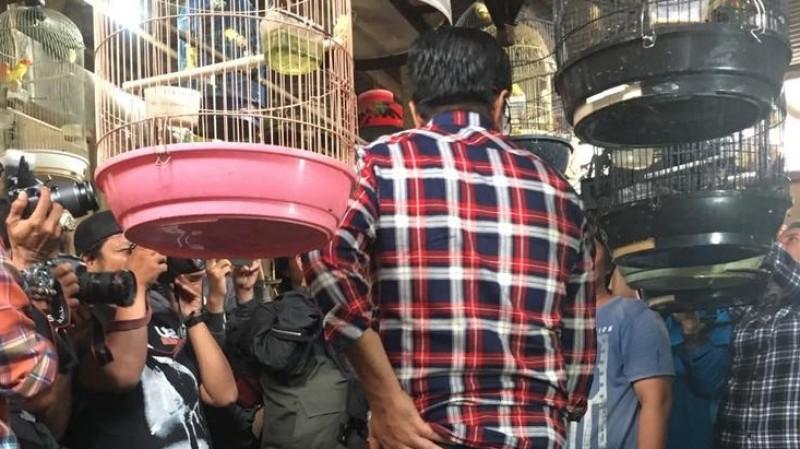 Djarot mengunjungi Pasar Pramuka