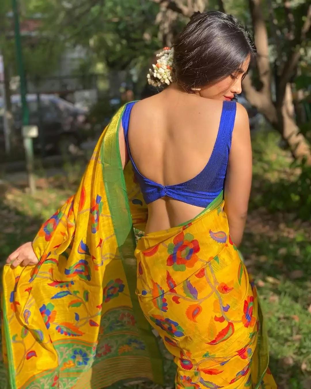 nabha-natesh-in-yellow-saree