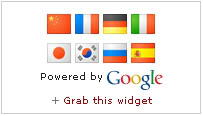 Google Translate Widgets