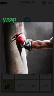 боксер точным ударом бьет по груше в перчатке