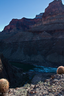 Snow, cactus, and the Colorado river, Colorado river, Grand Canyon, Chris Baer