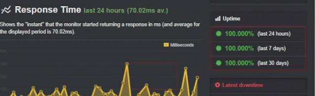 uptime performance test of wpx wordpress website