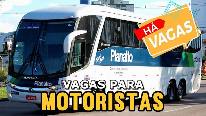 Planalto abre 22 vagas para motorista de ônibus