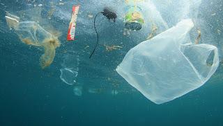 Resultat d'imatges de El plàstic afecta els bacteris que ens ajuden a respirar