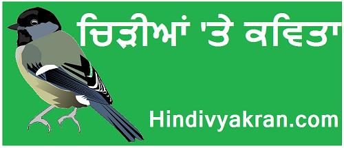 """Punjabi Poem on """"Sparrow Bird / Chidiya"""",  """"ਚਿੜੀਆਂ 'ਤੇ ਕਵਿਤਾ"""" for Kids"""
