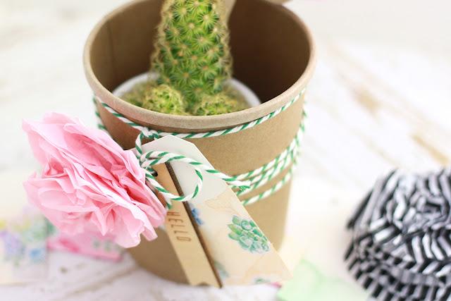 Workshop Crop in den Mai - Kaktus hübsch verpackt