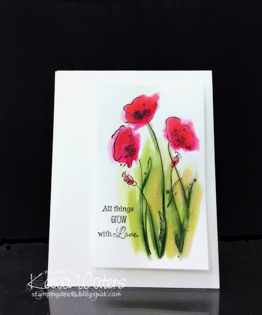 Rubbernecker, Kecia Waters, watercoloring, poppies, Tombow markers