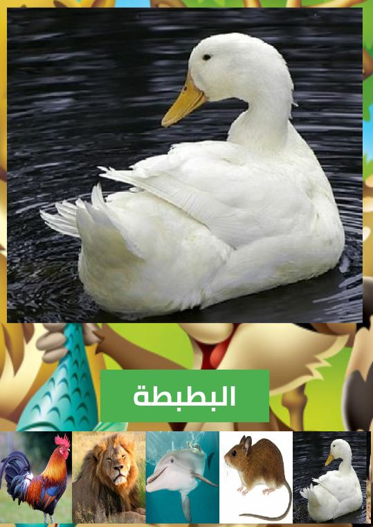 تطبيق أسماء و أصوات الحيوانات بالصوت و الصورة ....... 3