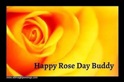 rose day 2021