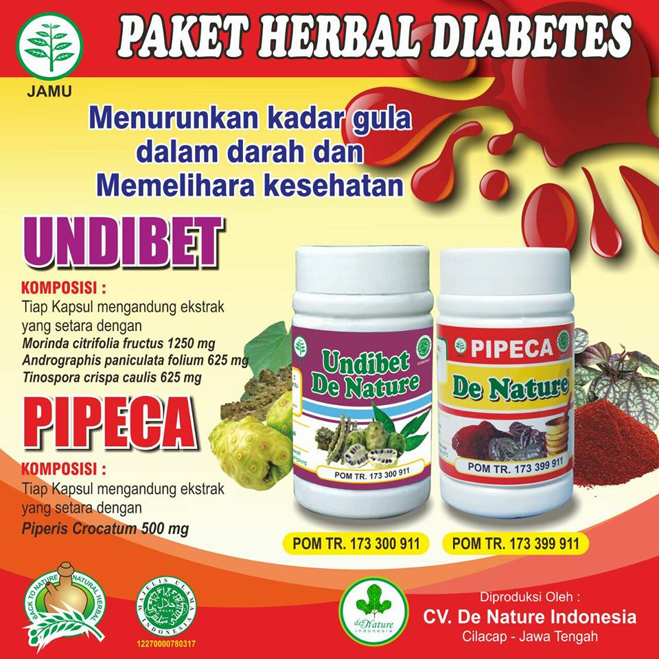 Paket obat Undiabets dan Pipeca de nature
