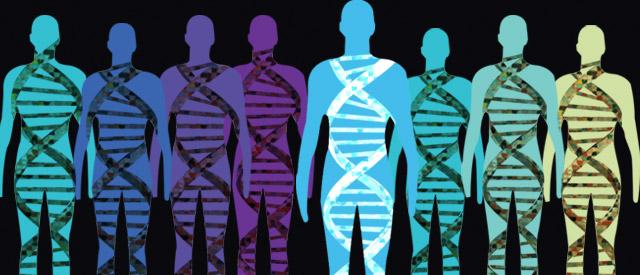 Byg 4 eso julia proyecto genoma humano for En 2003 se completo la secuenciacion del humano