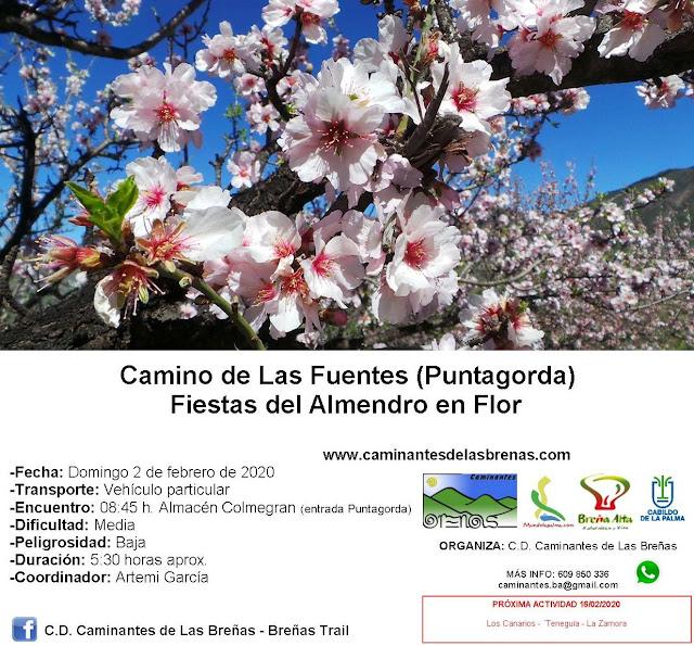 Caminantes de Las Breñas, Domingo 2 de Febrero: Camino de Las Fuentes (Almendro en Flor - Puntagorda)