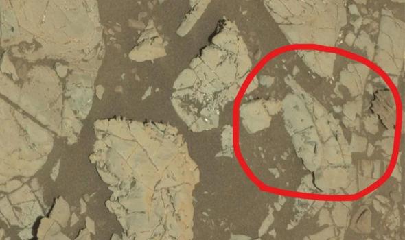 """¿Vida en Marte? El explorador de la NASA encuentra """"fósiles únicos"""" en el planeta rojo"""