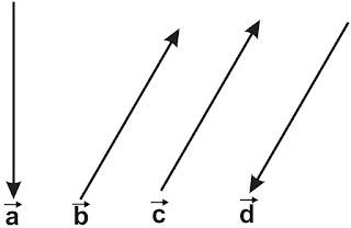 jenis atau macam-macam vektor