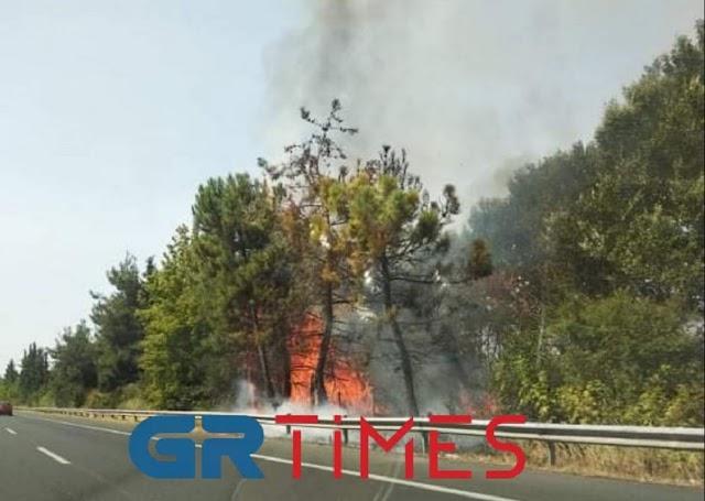 Αιγίνιο: Φωτιά – Φλόγες δίπλα στην εθνική οδό Αθήνας – Θεσσαλονίκης