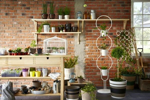Decorar con orqu deas guia de jardin - Macetas para plantas de interior ...