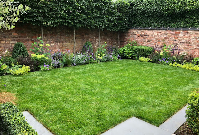 How to make the garden less visible to neighbors