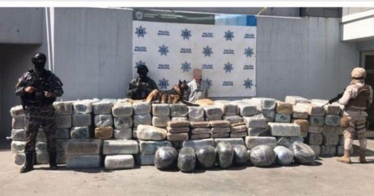 Elementos de la Sedena decomisan más de dos toneladas de marihuana en Campestre Murúa, Tijuana.