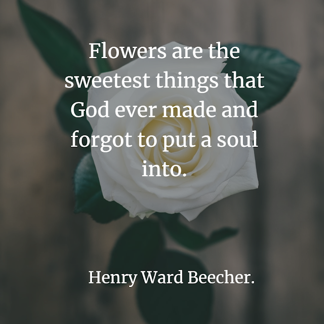inspirational nature sayings about flower