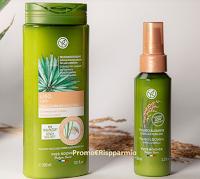 Logo Elle Hearst Experience Beauty : diventa tester shampoo crema e fluido lisciante Yves Rocher