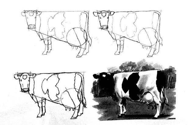 cara-menggambar-sapi