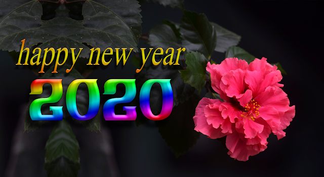 2020 wishes, 2020 greeting, 2020 facebook, 2020 message, 2020 new year photp, new year 2020, 2020 wishes,