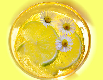 What is a Homeopathic Detox?