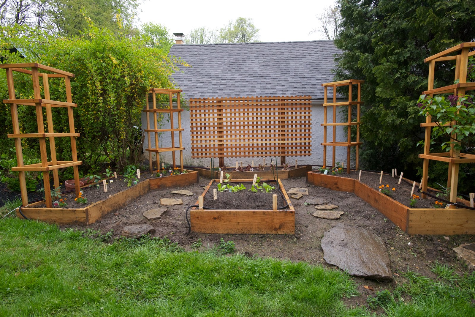 Back in the U.S.A.: Our Little Raised Bed Garden