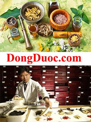 DongDuoc.com