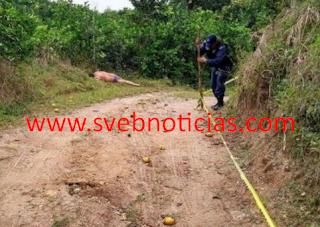 Hallan ejecutado en la localidad Arroyo de Piedra en Tlapacoyan Veracruz