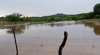 Chove forte no município de Picuí nesta quinta-feira (9); veja vídeo