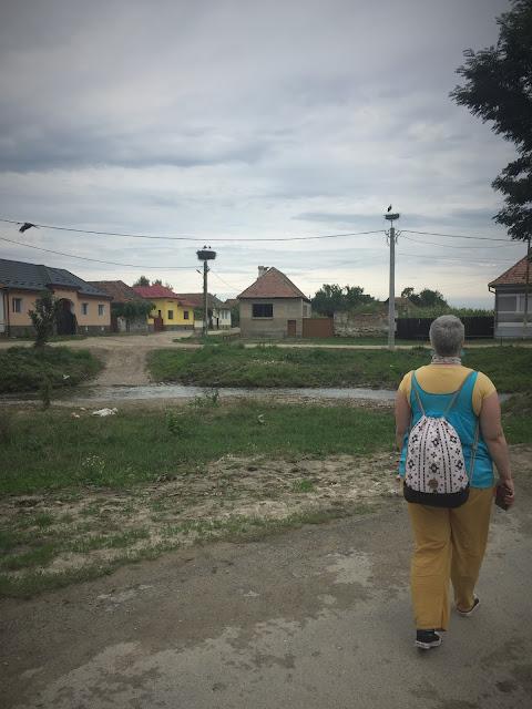 Brunch la Venetia de Jos, Brasov
