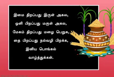 உங்களுக்கு பிடித்தவர்களுக்கு வித்தியாசமான பொங்கல் வாழ்த்து சொல்லனுமா?… அப்ப  இத அனுப்புங்க…! | Pongal: Wishes, Messages, Quotes