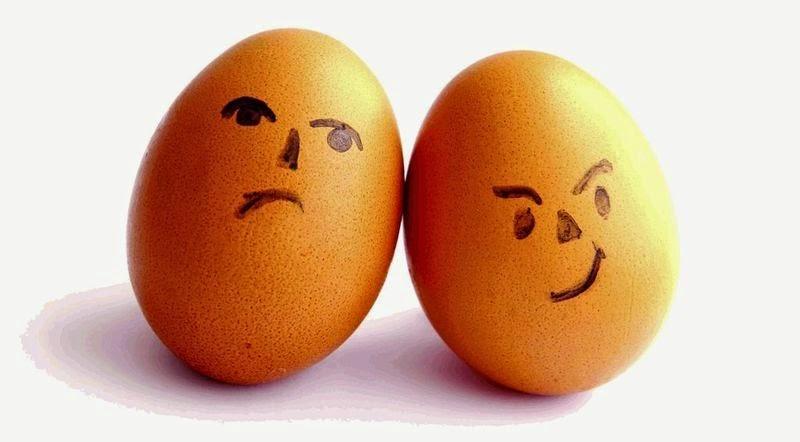 dudas gine: ¿comemos muchos huevos?
