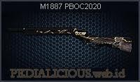 M1887 PBOC2020