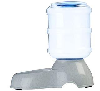 acqua animali