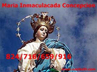 MENSAJE DE NUESTRA SEÑORA DE LA INMACULADA : TUS ACCIONES SON CORRECTAS