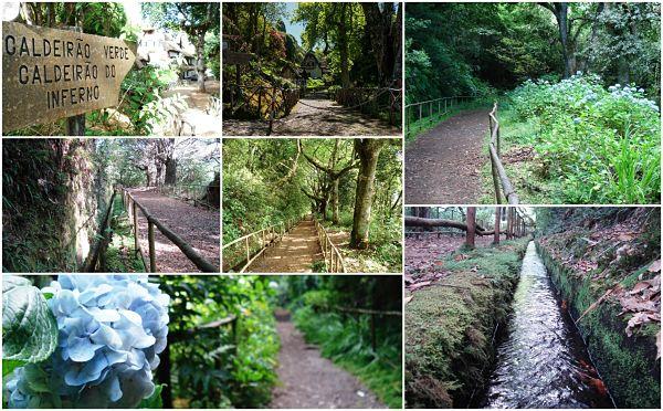Levada Pico das Pedras – Un sendero acequia apto para todos