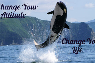 Change Your Attitude Change Your Life