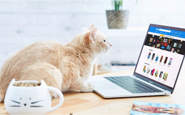 Chewy: Best Pet Affiliate Program   Earn $15 Commission Per New Customer Order