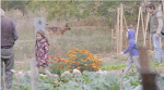 Βίντεο για τις περιαστικές καλλιέργειες στα στρατόπεδα