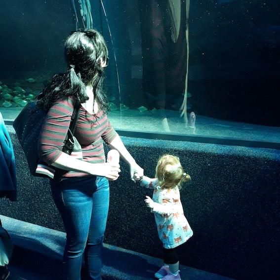 Toddler looks up at aquarium tank