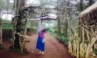 Harga Tiket Masuk, Rute dan Lokasi Goa Pinus Batu Malang Terbaru 2017