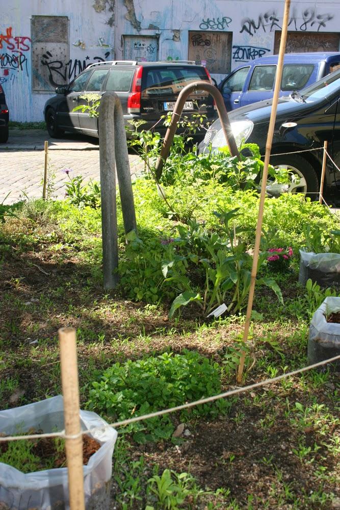 h hnerhaus urban gardening 3 es w chst und gedeiht hamburg. Black Bedroom Furniture Sets. Home Design Ideas