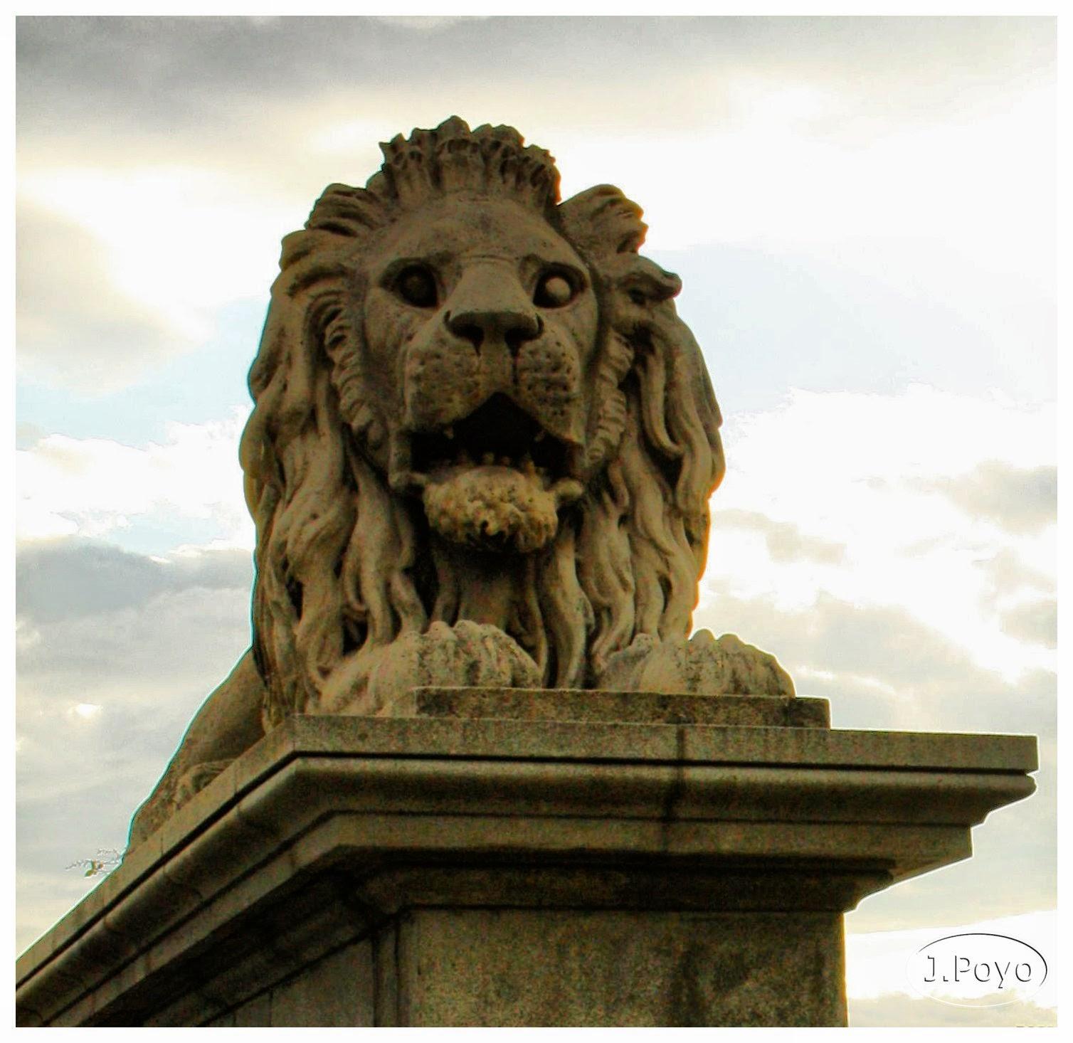 León del puente de las cadenas